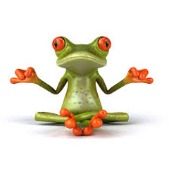 A frog in Buddha position